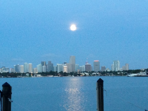 Moon over Miami, from the dock at 9 Island Avenue.